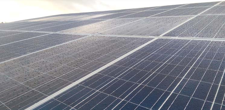 agricultural-photovoltaic-dairy-farm-munster